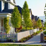 neighborhood-homes